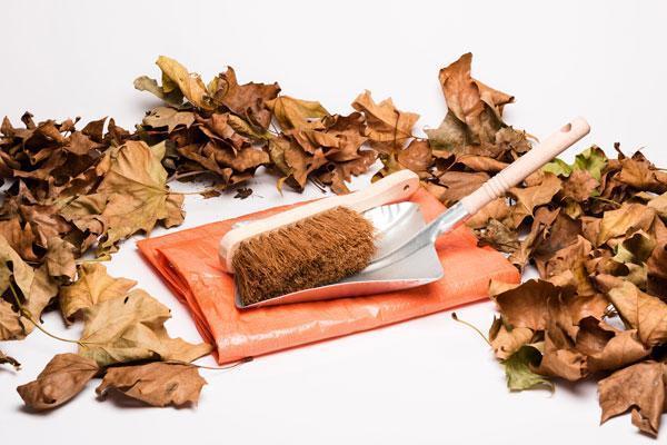 Klaar voor het najaar? Ook álles voor de herfst vind je bij Aabo Trading!